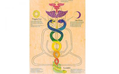 Come funziona l'energia Kundalini e come agisce dentro di noi